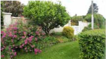 Jardin de M. Gadot